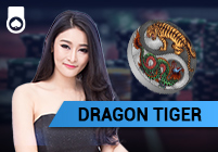 Dragon Tiger Hogaming